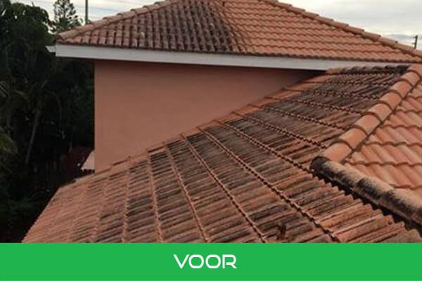 daken2 voor